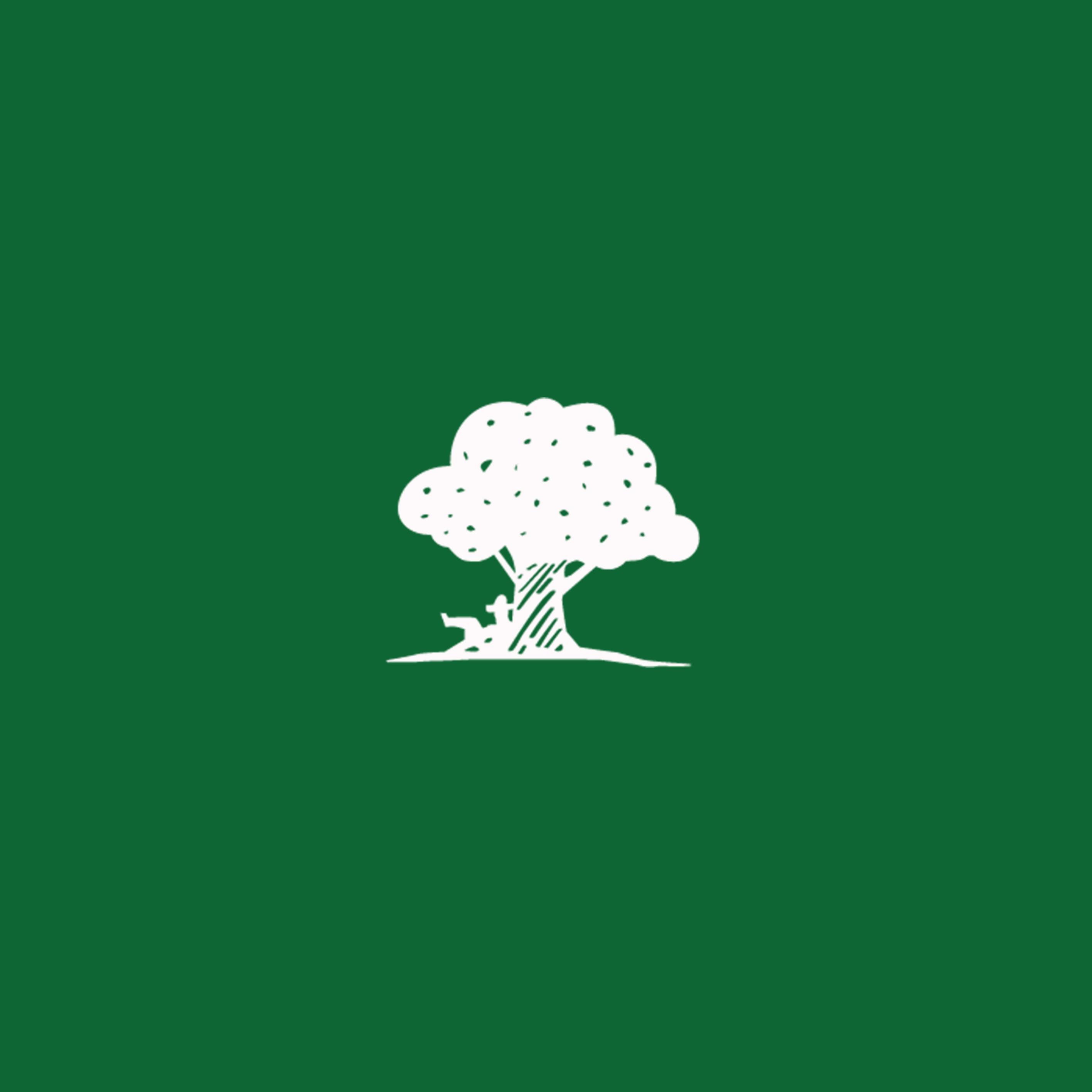 Quadrat Baum